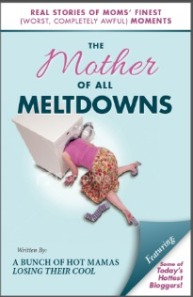 The Mother Of All Meltdowns Book Cover