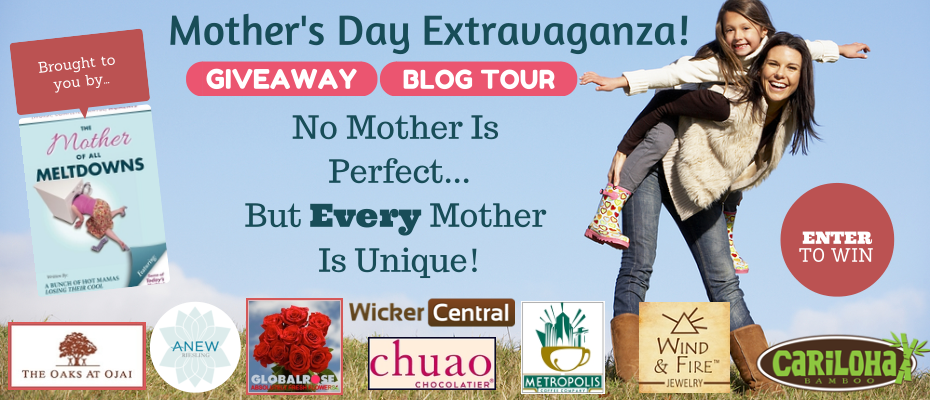 No Mother's Perfect Giveaway